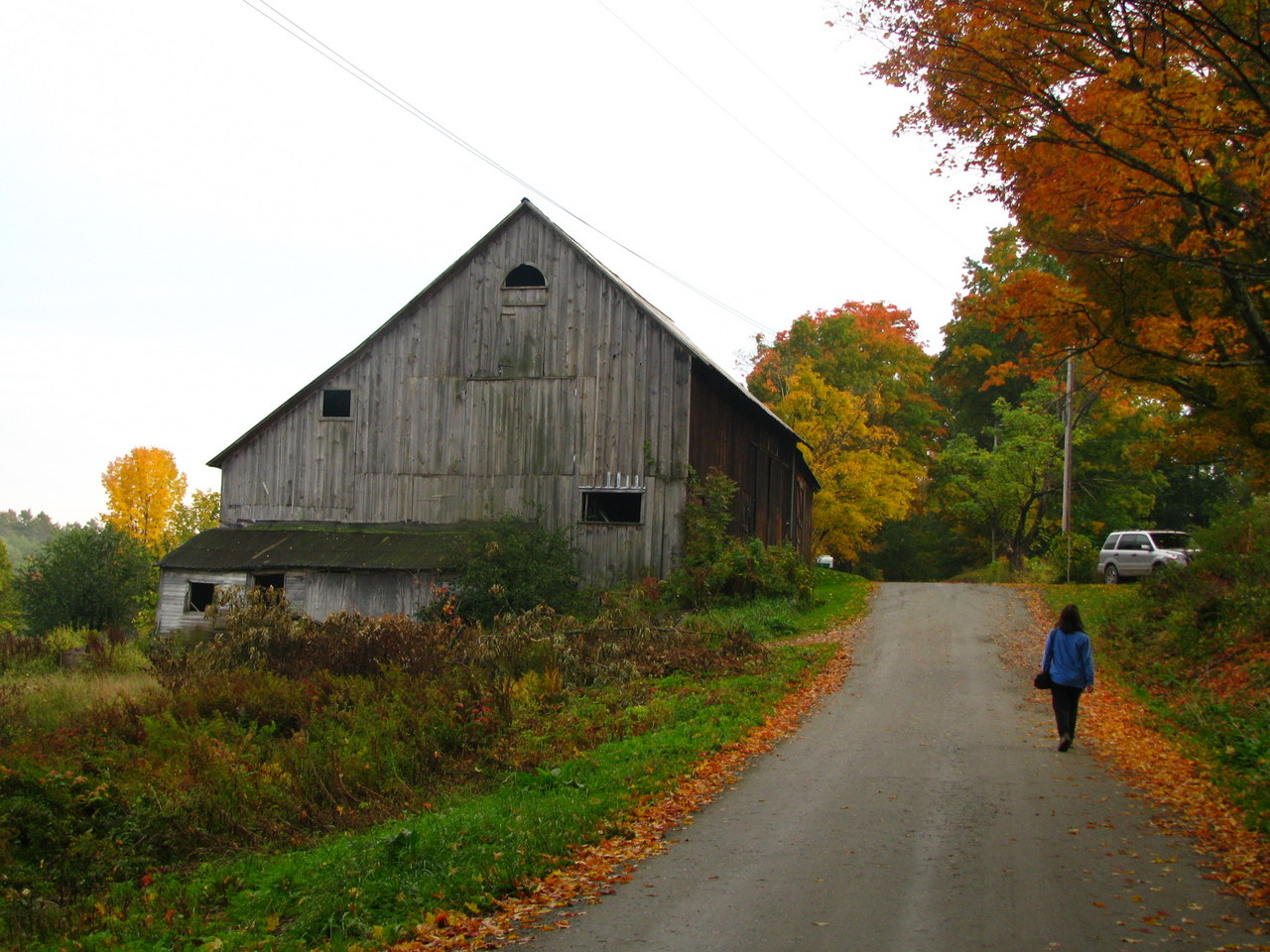 Though The Farmhouse Was Old They Had Pictures Of Sugar Maple Out Front When It Small Guest Suite Comfortably Up To Date
